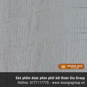 san-vinyl-dg-2024