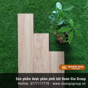 san-go-dg-floor-9005