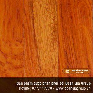 san-go-go-do-nam-phi-solid-450-mm