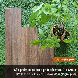 san-go-dg-floor-8003-new
